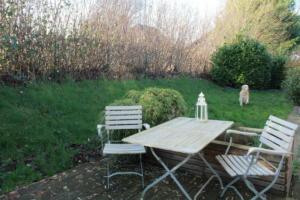 Garten mit Terrasse und Hund